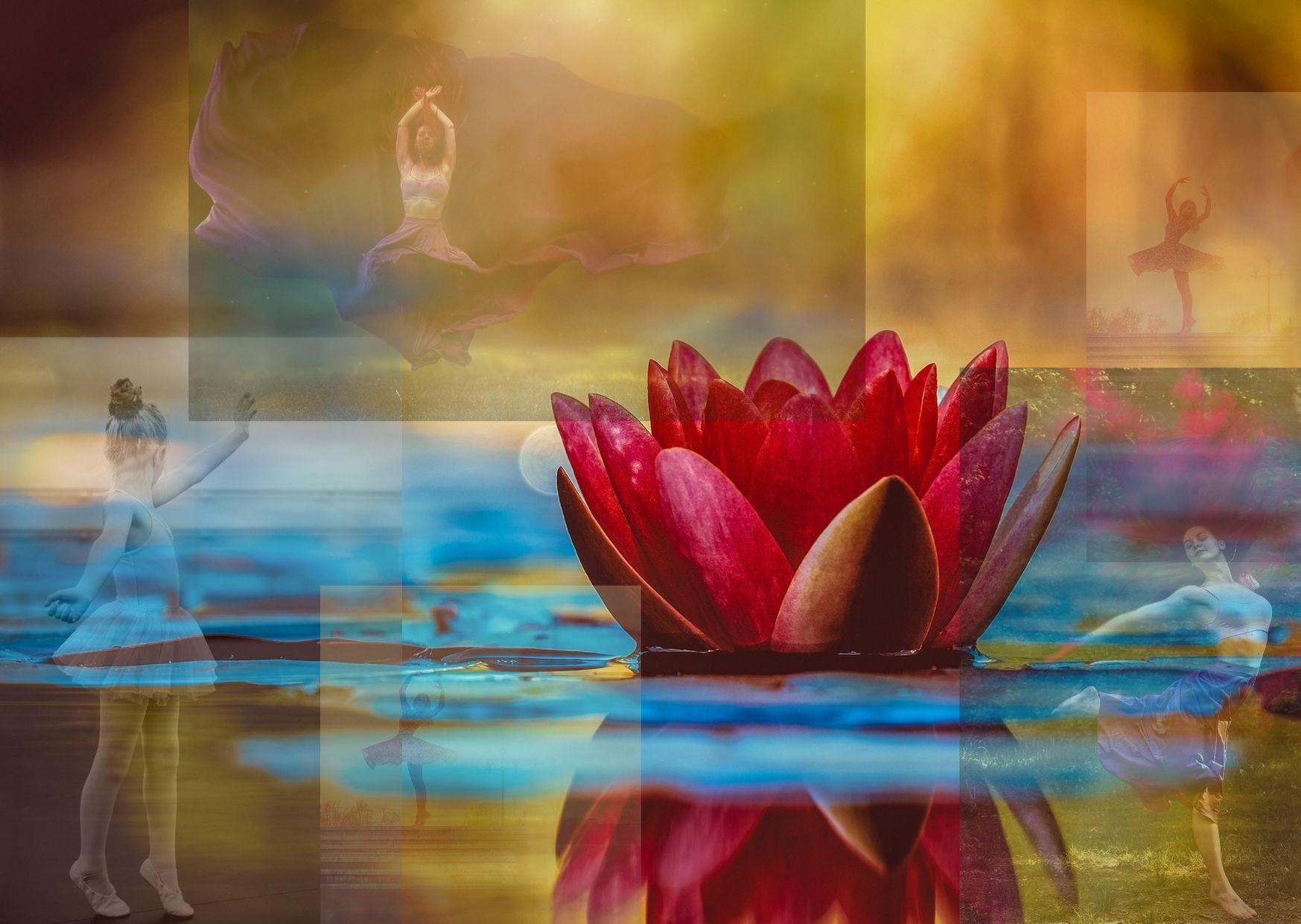 A BOUQUET OF UDUMBARA FLOWERS - Khenpo Tashi Sangpo