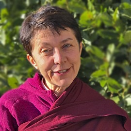AROSIO IT (EN, FR, DE, NL*)THE FOUR SCHOOLS OF TIBETAN BUDDHISM - Ani Laura Coccitto